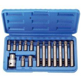 Juego 15 piezas destornilladores Torx 10 mm.