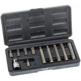 Juego 11 piezas de puntas XZN 10 mm.