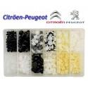 Surtido 345 Pcs. grapas para Citroen/Peugeot