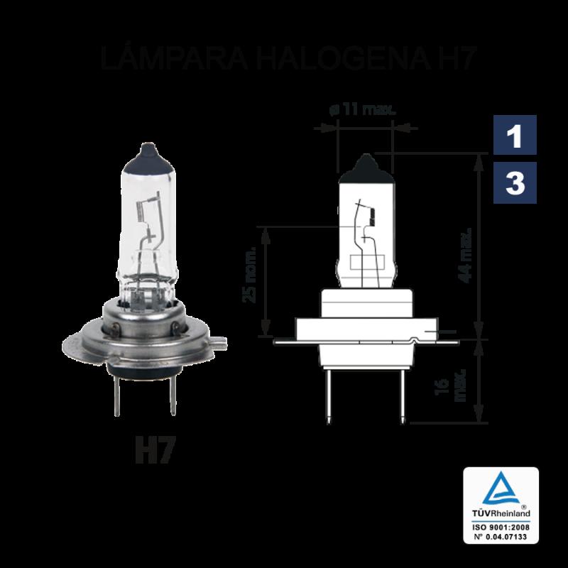 Lámpara Halógena H-7 12V 55W (Px26d)