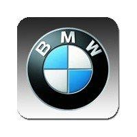 BMW silent blocks